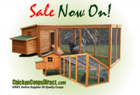 Chicken Coops Direct: A Review