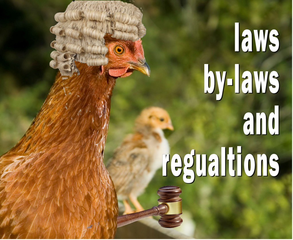 chicken keeping laws bylaws and regulations