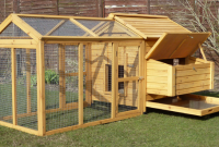 Chicken Coop Review – Devon Hen House (5 to 6 Hens)