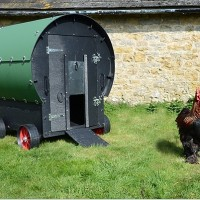 Chicken Coop Review: Green Frog Chicken Wagon (up to 6 Hens)