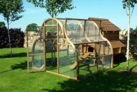 Fearnley Chicken Coop Review (for 10 to 12 Hens)