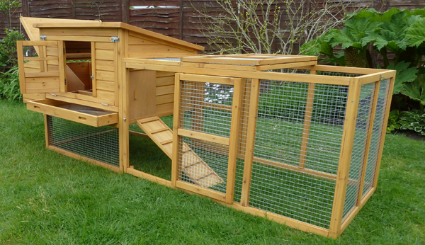The Dorset Chicken Coop Review (For up to 6 Hens)