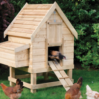 Review: Rowlinson Small Chicken Coop (for 4 Hens)