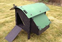 Chicken Coop Review: Green Frog Chicken Lodge (for 4 to 5 Hens)