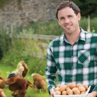 5 Places To Buy Your Chickens
