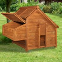 Sally Chicken Coop Review for 4 to 5 Hens