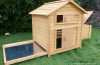 What to Look For When Buying a Chicken Coop and Run